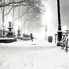 New York City - Bryant Park - Black and White