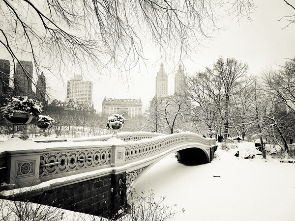 New York Winter - Central Park Snow